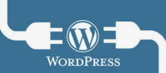 the complete process of wordpress website building system